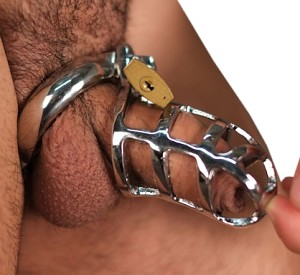 Little Bitch Male Chastity Cage
